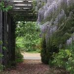 Iffin Farmhouse, Canterbury