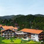 Hotel Pictures: Hotel Alpenhof, Bad Wiessee