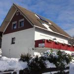 Hotel Pictures: Ferienwohnung Schneemann, Hohegeiß