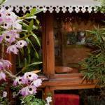 Chambres d'Hôtes Chez Aina,  Antananarivo