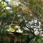 Wayside Guest House, Lusaka