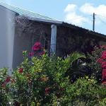 Chez Mimi,  Port Maturin