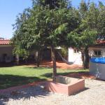 SPH - Sintra Pine House, Sintra
