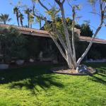 Famous Designers 5 Bed Home, Rancho Mirage