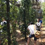 MyHouse Hillside Retreat, Phumĭ Prey Srâmaôch