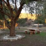Φωτογραφίες: La soñada, Cortaderas