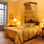 Hotel Pictures: Château de Montriou, Feneu