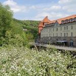 Hotel Pictures: Hotel Alter Packhof, Hannoversch Münden