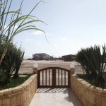 Apartment Ocean Front Praia Estoril