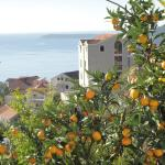 Panorama CG Apartments, Herceg-Novi