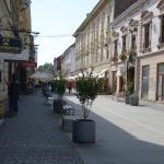 Attic Apartment - Unirii Square, Timişoara