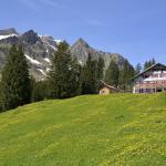 Zdjęcia hotelu: Alpengasthaus Edelweiss, Au im Bregenzerwald
