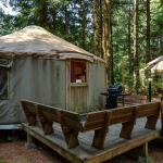 South Jetty Camping Resort Yurt 4,  Florence
