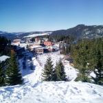 Fotografie hotelů: Enjoy the Silence Holiday Home, Vlasic