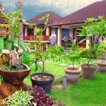Putu's Paradise Guesthouse, Ubud
