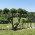 Villa Elisa Relax, Pozzolengo