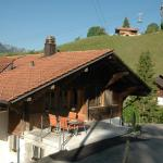 Hotel Pictures: Erle 1, Erlenbach im Simmental