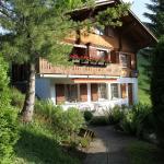 Hotel Pictures: Eggetli, Habkern