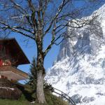 Grindelwald 52, Grindelwald