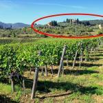 Casa Rossa - Villa - Intera, San Donato in Collina