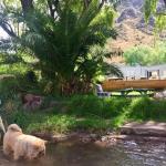 Foto Hotel: Tamari Hualta Ye, Valle Grande