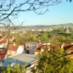 Medek Winery, Uherské Hradiště
