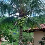 Hotel Pictures: Pousada Vale dos Sonhos, Saquarema