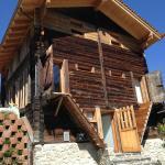 Hotel Pictures: Ferienwohnung Ursis Stall, Fieschertal