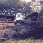 Hornbill hideaway jungle resorts, Maraiyūr