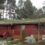 Båtstø Camping,  Elga