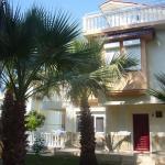 Villa Blaauw, Kızılot