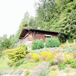 Hotel Pictures: Vue des Alpes, Arbaz