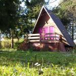 Cabane aux oiseaux, Chouzy-sur-Cisse