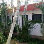 Punto Checo, Mérida