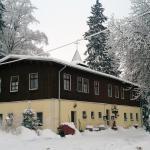 Hotel Pictures: Waldhotel Zöbischhaus, Bad Reiboldsgrün