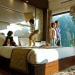 Shimla Havens Resort, Shimla