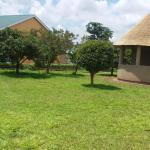 Five Trees, Lilongwe