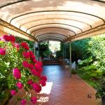 Hotel Bacco,  Lido di Camaiore