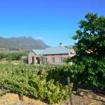 Vineyard Views Country House,  Riebeek-Kasteel