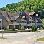 Hotel Pictures: Hôtel Les Rives, Guebwiller