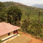 Green Garden Home Stay., Vythiri