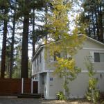 2853 Springwood Six-Bedroom Family Retreat, South Lake Tahoe
