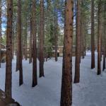 1200 Wildwood Ski Two-Bedroom Condo #16,  South Lake Tahoe
