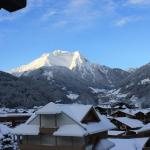 Central Penthouse Apartment,  Mayrhofen