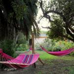 Hostal El Arbol Beach, La Serena