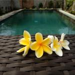 Eka Bali Guest House, Ubud