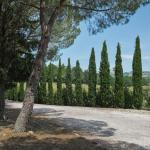Villa Manciano 13, Manciano