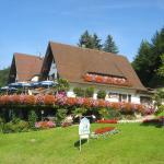 Hotel Pictures: Hotel Restaurant Jaegersteig, Bühl