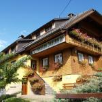 Hotel Pictures: Pension Jägerhof, Bernau im Schwarzwald