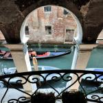 Red Rose,  Venice